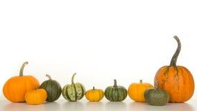 Grupo de calabazas anaranjadas y verdes aisladas en un backgroun blanco Imagen de archivo libre de regalías