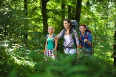 Grupo de caminantes jovenes en las montañas Fotos de archivo libres de regalías
