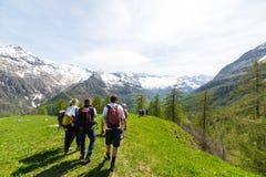 Grupo de caminantes que exploran las montañas, actividades al aire libre en verano Imágenes de archivo libres de regalías