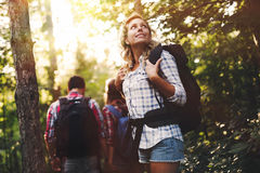 Grupo de caminhantes backpacking que vão para a floresta que trekking imagens de stock