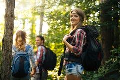Grupo de caminhantes backpacking que v?o para a floresta que trekking fotos de stock