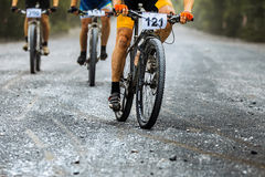Grupo de camino de la grava del paseo de los ciclistas de los jinetes Fotografía de archivo libre de regalías