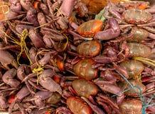 Grupo de cangrejos llenos en venta en un mercado imagen de archivo libre de regalías