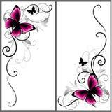 Grupo de cantos bonitos com borboleta e linhas decorativas Ornamento do vetor para a decoração da página Elementos florais do qua Foto de Stock Royalty Free