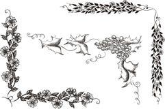 Grupo de cantos decorativos florais Imagem de Stock