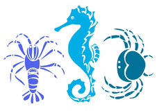 Grupo de caranguejo, cavalo de mar, câncer Vetor do esboço Imagem de Stock Royalty Free