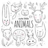 Grupo de caras animais bonitos Ilustração da garatuja do estilo do esboço do vetor Fotografia de Stock Royalty Free