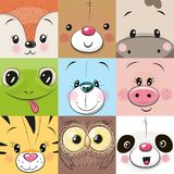 Grupo de caras bonitos dos animais ilustração royalty free