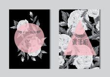 Grupo de cartões floral ilustração do vetor