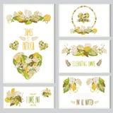 Grupo de cartões floral Fotografia de Stock Royalty Free