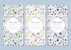 Grupo de cartões floral da garatuja bonito do vintage Imagem de Stock