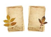 Grupo de cartões retros e de folha seca Imagem de Stock Royalty Free