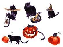 Grupo de Cat Cartoon With Different Actions, Dia das Bruxas ilustração stock