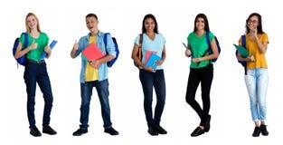 Grupo de 5 caucasianos e estudantes latino-americanos imagem de stock