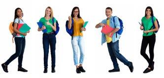 Grupo de 5 caucasianos e estudantes latino-americanos fotografia de stock