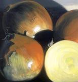 Grupo de cebollas Fotografía de archivo libre de regalías