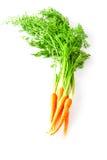 Grupo de cenouras frescas Imagem de Stock Royalty Free