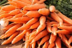 Grupo de cenouras frescas Fotografia de Stock