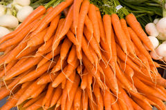Grupo de cenouras orgânicas Imagens de Stock