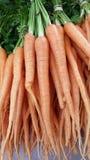 Grupo de cenouras orgânicas saborosos Imagens de Stock