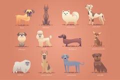 Grupo de cães alemães, formato bonito do vetor da ilustração dos desenhos animados Imagens de Stock