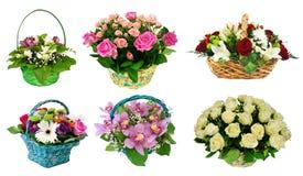 Grupo de cestas de flores frescas, presente, isolado no backgro branco Imagem de Stock