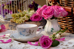 Grupo de chá antiquado no jardim Imagem de Stock Royalty Free