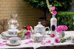 Grupo de chá antiquado no jardim Foto de Stock Royalty Free