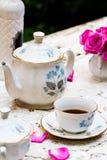 Grupo de chá antiquado no jardim Imagens de Stock