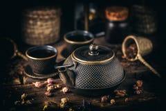 Grupo de chá asiático do ferro Fotografia de Stock