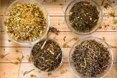 Grupo de chá da infusão do Camomila-estragão Imagem de Stock Royalty Free