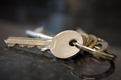 Grupo de chaves Imagem de Stock