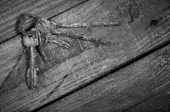 Grupo de chaves oxidadas velhas em uma tabela de madeira Fotografia de Stock Royalty Free