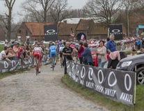 Grupo de ciclistas - Paris-Roubaix 2018 Fotografia de Stock Royalty Free