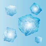 Grupo de cinco cubos de gelo transparentes na luz - cores azuis Imagens de Stock Royalty Free