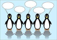 Grupo de cinco pingüinos con las burbujas del discurso Reclamos en blanco para propio mensaje Ejemplo lindo en el hielo azul clar stock de ilustración