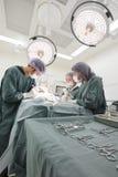 Grupo de cirurgia veterinária na sala de operação Fotos de Stock Royalty Free