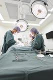 Grupo de cirurgia veterinária na sala de operação Fotografia de Stock