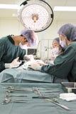 Grupo de cirurgia veterinária na sala de operação Fotografia de Stock Royalty Free