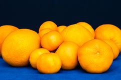 Grupo de citrinos alaranjados Laranjas, mandarino e tangerinas Fotografia de Stock Royalty Free