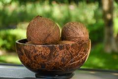 Grupo de cocos marrons na placa de madeira na tabela Fotografia de Stock Royalty Free