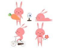 Grupo de coelhos bonitos em várias posições Fotografia de Stock