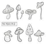 Grupo de cogumelos mágicos estilizados ilustração royalty free