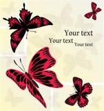Grupo de colagem criativa com as borboletas vermelhas e pretas ilustração stock