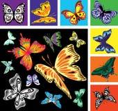 Grupo de colagem criativa com borboletas coloridas ilustração royalty free