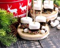 Grupo de comida sumergida de la Navidad de las melcochas Imagenes de archivo