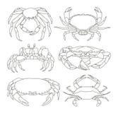 Grupo de ícones do caranguejo do vetor Foto de Stock Royalty Free