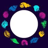 Grupo de cor de silhuetas das conchas do mar no círculo Shell, búzio, espiral, hélice Flocos de neve Fotografia de Stock