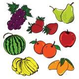 Grupo de cor do fruto ilustração do vetor