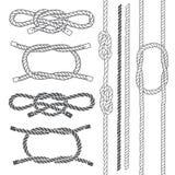 Grupo de corda marinha, nós Elementos do vetor em um fundo branco ilustração do vetor